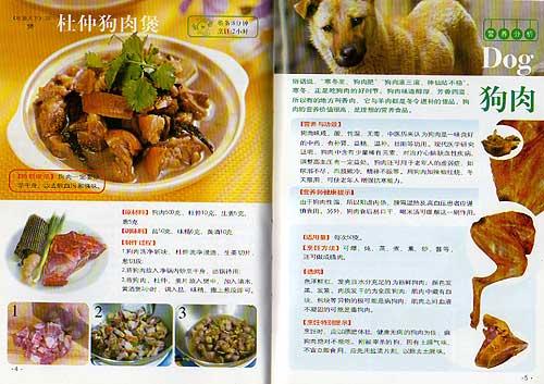 livro_chines_cao.jpg